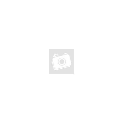GSMX-LTE
